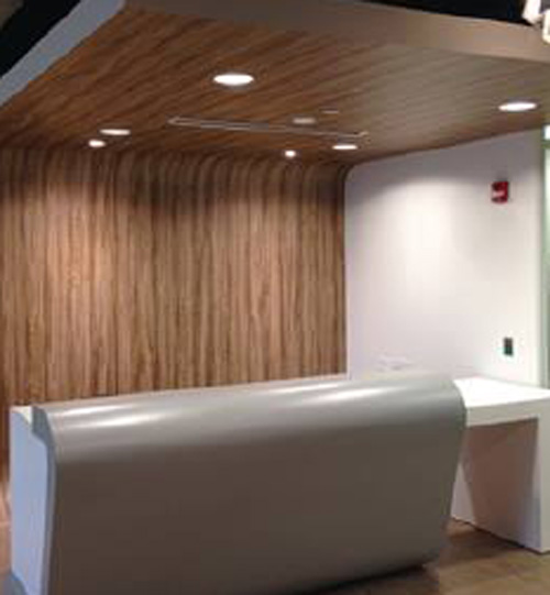 vinyl films for walls and partitions